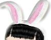 ★ lola bunny