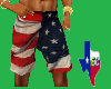 IS Flag shorts