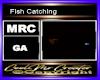 Fish Catching