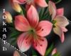 -IO-Lily flower