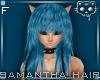 Blue HF15a Ⓚ