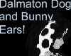 Dalmation dog/bunny ears