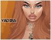 Y| America Ginger