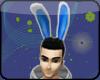 Funny Bunny *anim/m