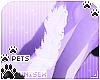 [Pets] Aurora |back tuft
