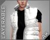 ~AK~ Puff Vest: Gray