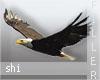 Shi* Eagle + Birds Fille