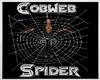 Cobweb Spider XR