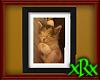 Sleeping Kitten Frame