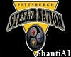 Steelers (Custom)