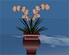 copper pot plant