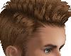 Brown Hair M1Br