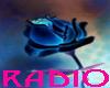 [BB] BLUE