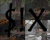 $!X Seasonal Forest