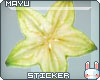 ~M~ Star Fruit