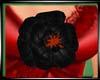 (WW)LGE BLACK ROSE PIN