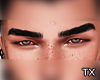 Tx. Steve Eyebrows