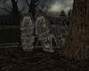 !Halloween Cursed Coffin