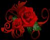 Rose Detailed