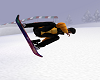 snow board /poses