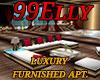 Luxury furnished apt