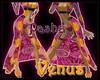[Ph]Venus~Pasha~GA~Gold~
