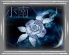 *K* Ice Rose