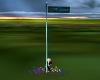 Flag Pole-Hijinx