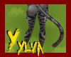 Comma tail V1