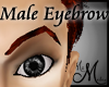 MM~ Eyebrow Red Male