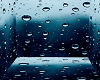 Blue BKGD wet