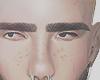 Bystan brows