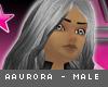 [V4NY] Aaurora Silver M