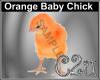 C2u Orange Chick
