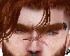 Premat ginger Eyebrows