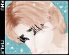 . Kitten | Hair
