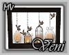 *MV* Birdcage Art