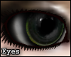 [TLZ]Evlen eyes - green