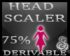 75% Head Resizer