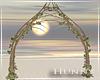 H. Blush Arch V1