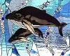 reesie whale room