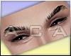 ♔ Adam Eyebrows