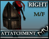 (MV) M/F - Right Shield