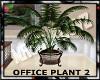 MATERNITY:office plant 2