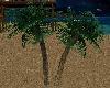 [MP] Palm Trees