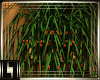 !L! Invidia Corner Plant