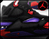 Jordan 4's Raptor ²
