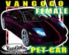 VG Purple CAR Avi FEMALE