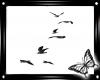 !! Flying Birds Blk