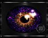 ~BB~ Star Purple/Orange
